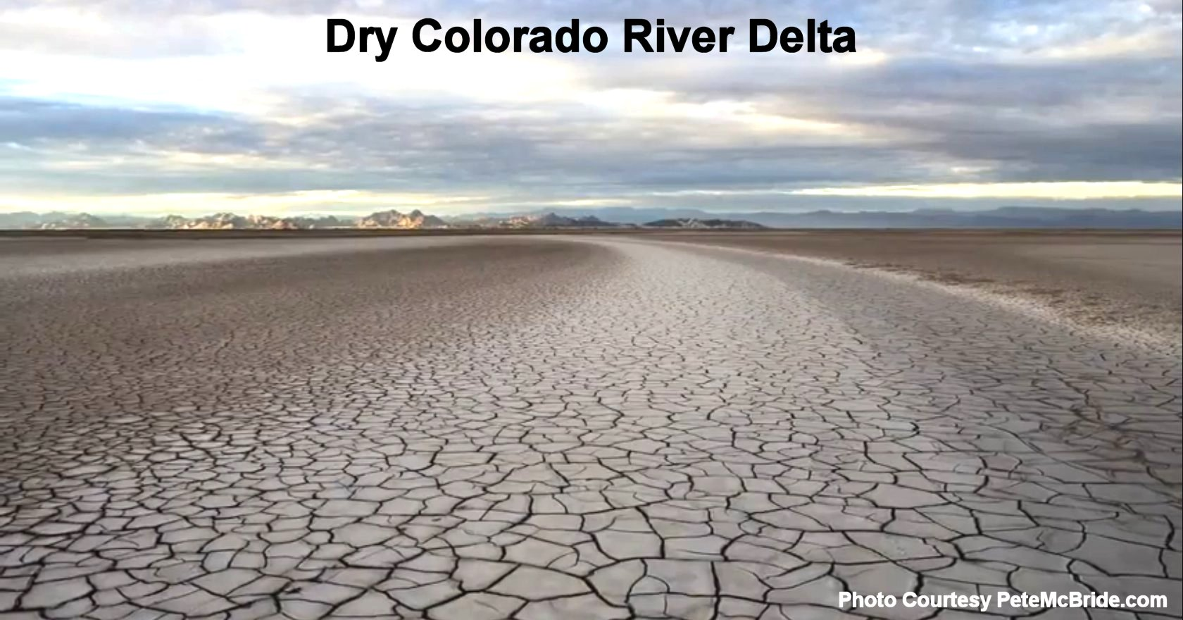 Restore the Colorado River Delta Petition Hits 2,500 ...